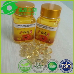 Lingzhi Extract Oil Softgel Reishi Mushroom Extract pictures & photos