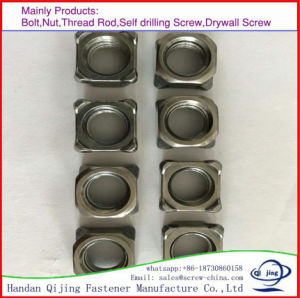 Square Head Bolt with Nut pictures & photos