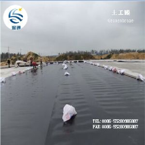 Manufacturer LDPE HDPE Composite Plastic Geomembrane pictures & photos