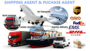 Bdi Shipping DPT Agent Service pictures & photos