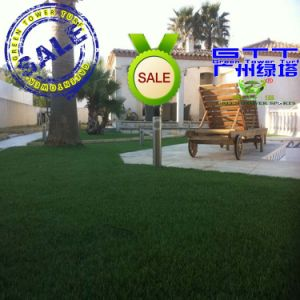 Good Quality Landscape Turf Used for Villa (LTHBS30S4-1)