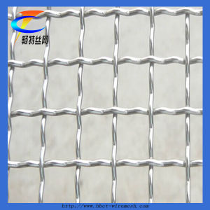 Stainless Steel Welded Wire Mesh Factory (CT-27) pictures & photos