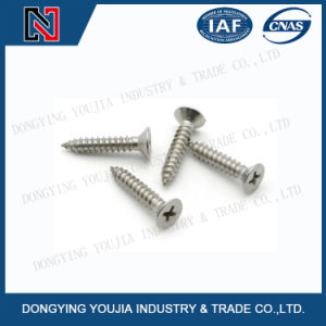 Yb846 Stainless Steel Cross Recessed Countersunk Head Tapping Screw pictures & photos
