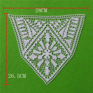 Fashion Embroidery Lace Collar (cn83) pictures & photos