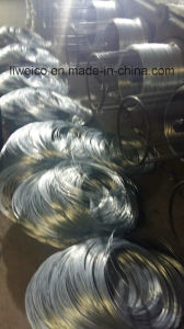 High Quality Coated by Electric Galvanized Iron Wire pictures & photos