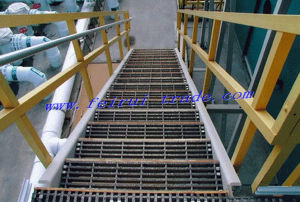 Stainless Steel Grating for Chemical Plant Platform pictures & photos