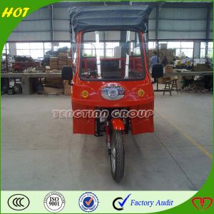 High Quality Chongqing 3 Wheel Car pictures & photos