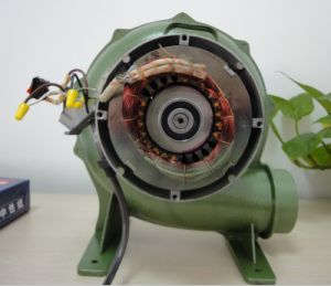 2inch Czr-T 100% Copper High Quality Aluminum Electric Blower pictures & photos