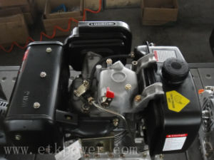 Single Cylinder Diesel Engine (10HP) pictures & photos