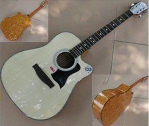 41 Inch Acoustic Guitar (FS-4106C-N)