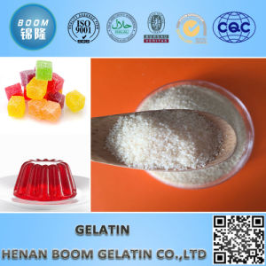 Bone Gelatine/Gelatin for Food Application pictures & photos