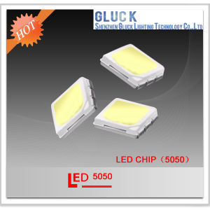 High Lumen Waterproof 5050 SMD LED