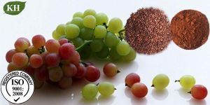 Grape Seed Extract 95% Proanthocyanidins UV; Polyphenols 95% UV pictures & photos