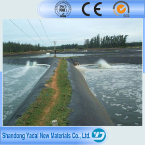 HDPE LDPE Film Fabric Geocomposite Geomembrane for Fish Pond pictures & photos