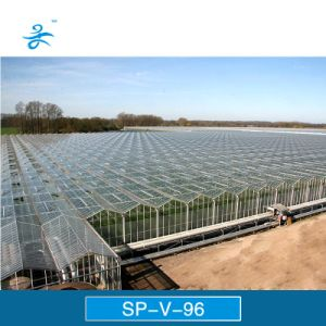 Sp-V-96 Venlo Multi-Span Glass Greenhouse