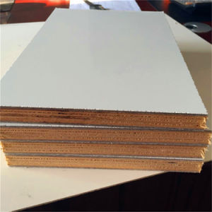 FRP Plywood Composite Door Panel for Refrigerated Truck Door pictures & photos