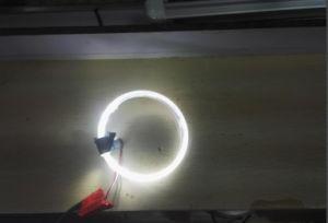 Light Guide Ring, Optical Fiber, Light-Guide Fiber Kl-203 pictures & photos
