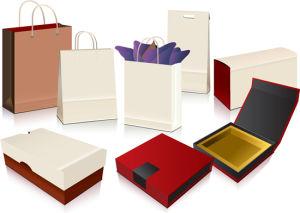 Custom Design Shopping Paper Bag/Gift Bag