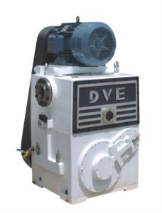 Rotary Piston Pump Used for Vacuum Heat Treatment pictures & photos