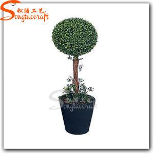 Graden Decoration PVC Artificial Plant Bonsai Tree pictures & photos