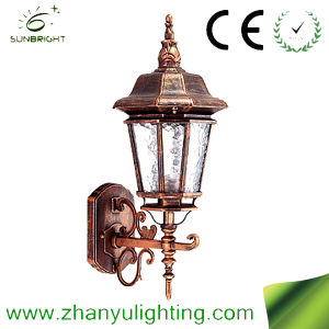 IP65 Outdoor Light Walllamp (ZY-HW020) pictures & photos