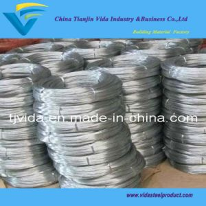 Hot Dipped Galvanized Wire with Excellent Quality pictures & photos