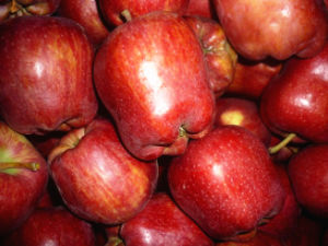 Fresh Red One and Two Grade Apple Export pictures & photos