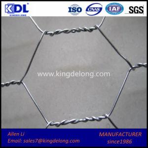 Malla De Alambre Hexagonal/ Protection Wire Mesh Fence pictures & photos
