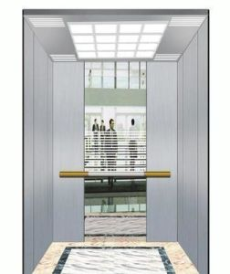 Fjzy-High Quality and Safety Passenger Elevator Fjk-1679 pictures & photos