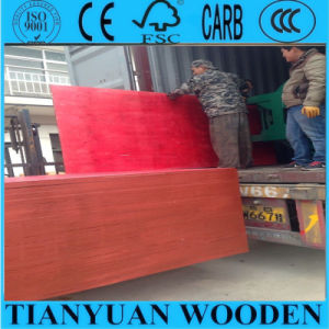 Red Color Waterproof Plywood Price, Film Faced Plywood pictures & photos