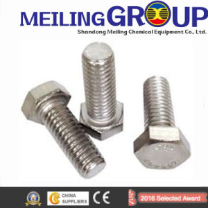 Customized High-Grade All Kinds of Steel Fasteners pictures & photos
