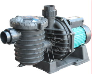 High Flow Rate Swimming Pool Pump pictures & photos