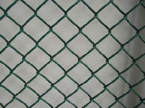 PVC Coated Chain Link Fence Form China pictures & photos