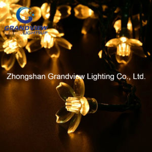 Warm White Color Waterproof LED Christmas Light Sakura Shaped String Light pictures & photos