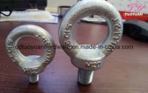 Manufacture of DIN582 Eye Nut pictures & photos
