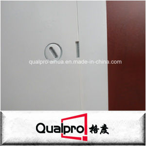 Modern design steel access panel AP7050 pictures & photos