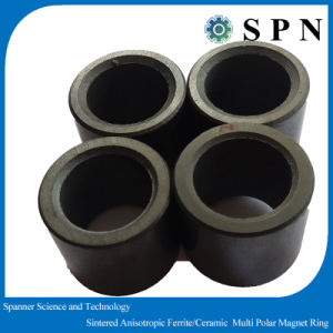 Ferrite Permanent/ Ceramic /Ferrite Magnet Rings for Stepping Motor pictures & photos