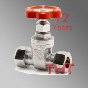 316 CF8m Stainless Steel 200psi Gate Valve pictures & photos
