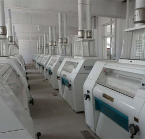 Flour Mill Machine for Wheat/Maize (6FTF-300) pictures & photos