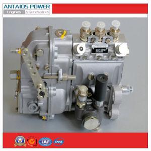 Fuel Injection Pump of Deutz Diesel Engine (FL912/913) pictures & photos