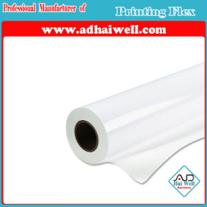 Advertising Printing PVC Backlit Block-out PVC Flex Banner pictures & photos