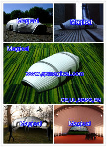 Tent Inflatable (MIC-040) pictures & photos
