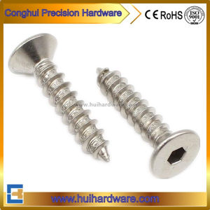 Stainless Steel Hex Socket Csk Head Security Screws pictures & photos