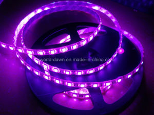 CE EMC LVD RoHS Two Years Warranty, Purple Waterproof Flexible LED Strip (WDSMD5050-60) pictures & photos