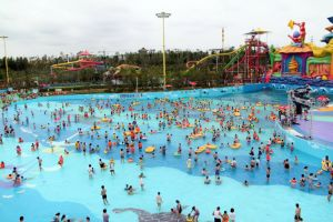 Artificial Wave Pool with Blower (DLWP209) pictures & photos