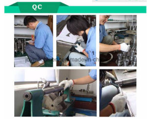 Continously Spraying Type Sterilizer pictures & photos
