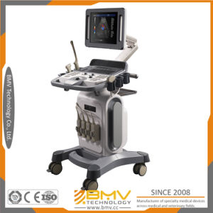 4D Baby Ultrasound Full Digital Trolley Color Doppler (bcu-40) pictures & photos