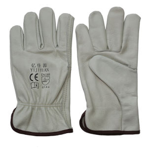 Wing Thumb Driving Safety Cow Grain Leather Work Gloves pictures & photos