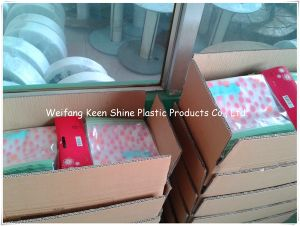 Color Packing LDPE Zip Lock Plastic Bag pictures & photos