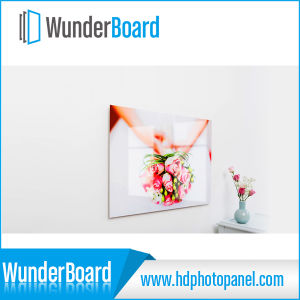 HD Best Selling Aluminum Printing Photo Prints on Metal pictures & photos